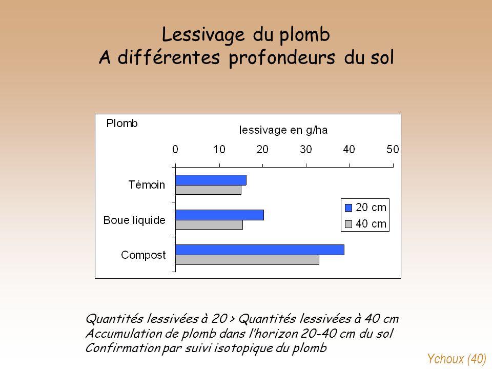 Lessivage du plomb A différentes profondeurs du sol Quantités lessivées à 20 > Quantités lessivées à 40 cm Accumulation de plomb dans lhorizon 20-40 c