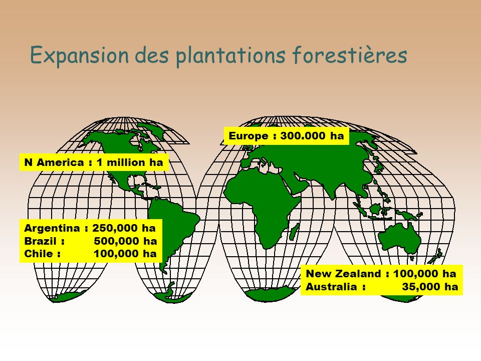 Expansion des plantations forestières Argentina : 250,000 ha Brazil : 500,000 ha Chile : 100,000 ha N America : 1 million ha New Zealand : 100,000 ha