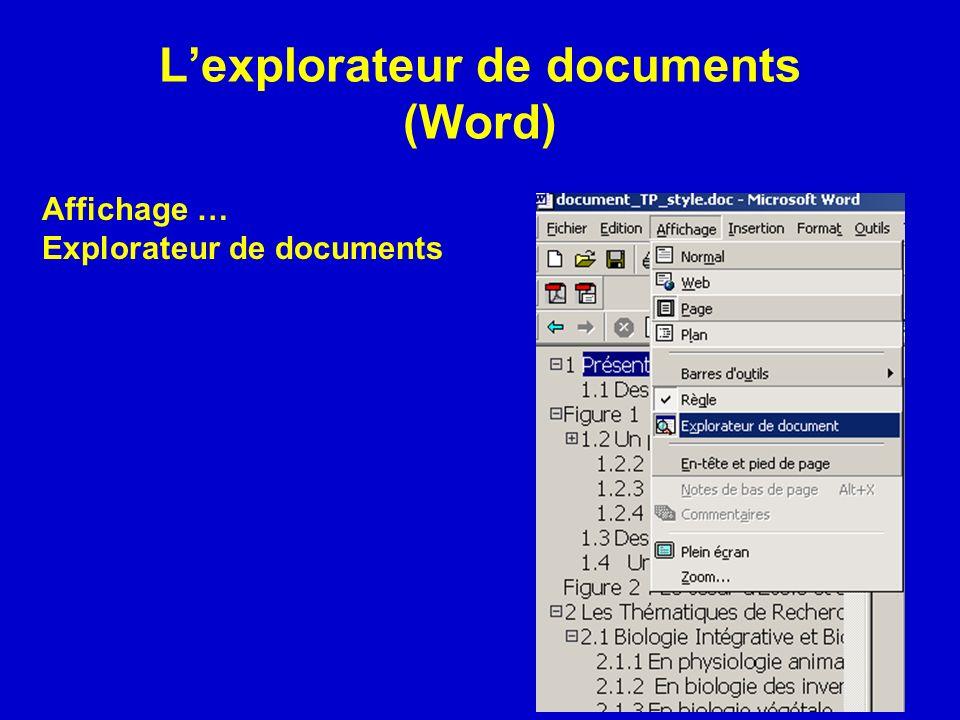 Lexplorateur de documents (Word) Affichage … Explorateur de documents