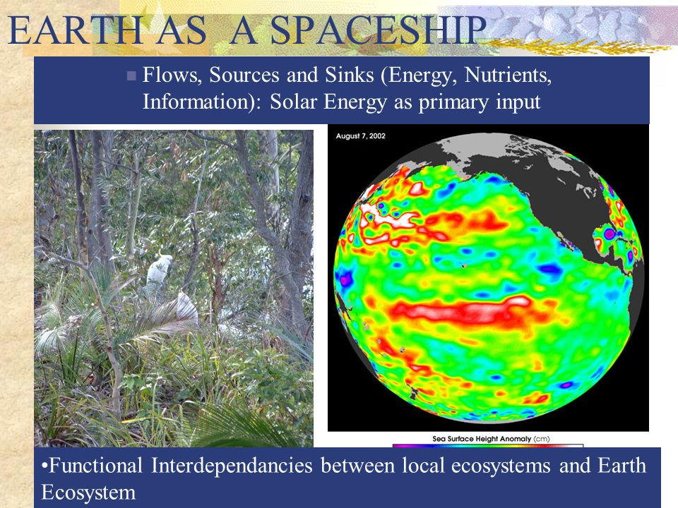 Flows, Sources and Sinks (Energy, Nutrients, Information): Solar Energy as primary input Functional Interdependancies between local ecosystems and Ear
