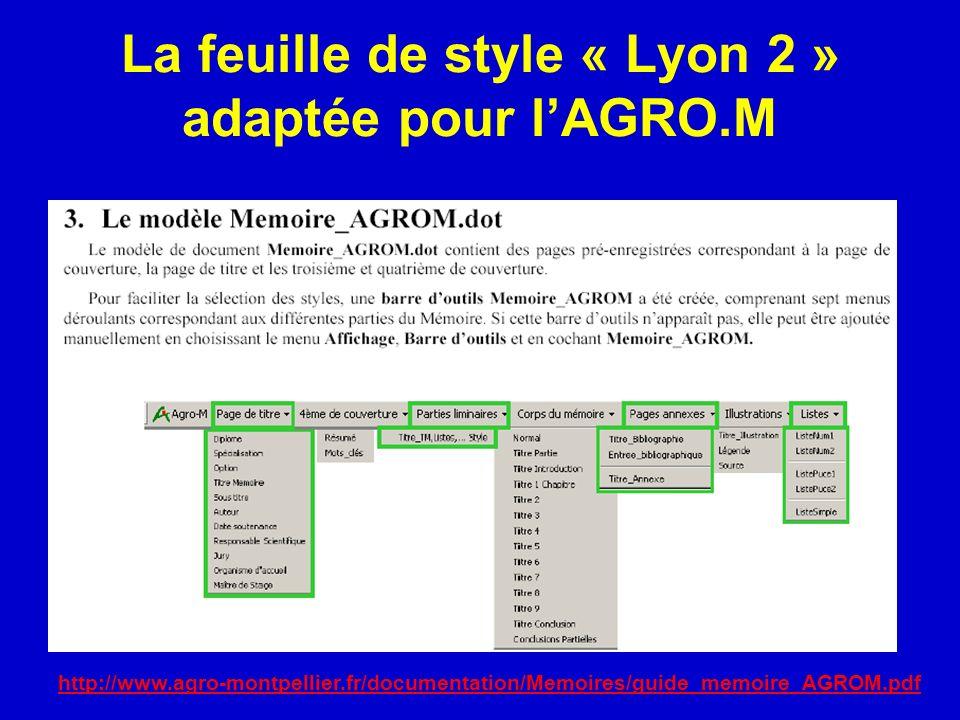 La feuille de style « Lyon 2 » adaptée pour lAGRO.M http://www.agro-montpellier.fr/documentation/Memoires/guide_memoire_AGROM.pdf