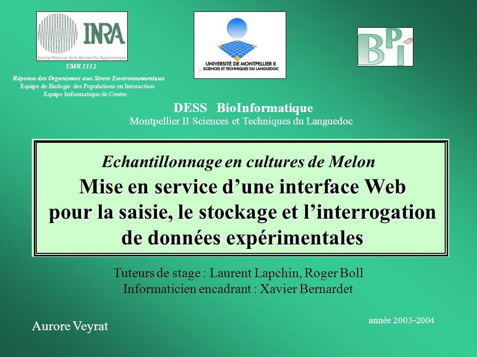 DESS BioInformatique Montpellier II Sciences et Techniques du Languedoc Echantillonnage en cultures de Melon Aurore Veyrat année 2003-2004 UMR 1112 Ré