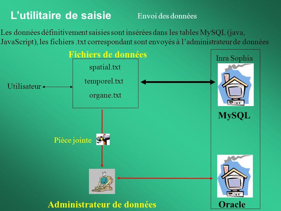 Administrateur de données Fichiers de données Pièce jointe Oracle Lutilitaire de saisie Envoi des données Les données définitivement saisies sont insé
