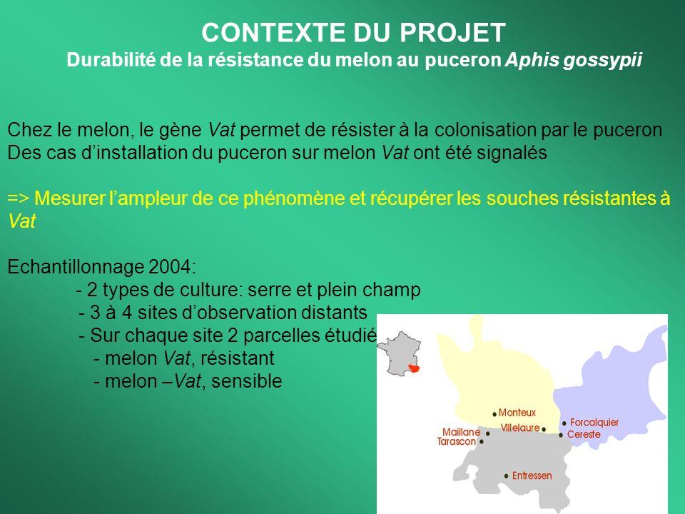 Objectif du stage BioInformatique 1.Conception et mise en service dune interface WEB de saisie des données melon 2.Mise en place dune base sous MySQL pour le stockage des données 3.Débuggage de lutilitaire de saisie rosier développé en 2003