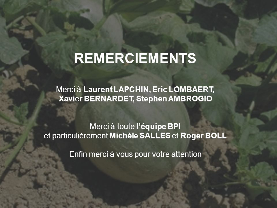 REMERCIEMENTS Merci à Laurent LAPCHIN, Eric LOMBAERT, Xavier BERNARDET, Stephen AMBROGIO Merci à toute léquipe BPI et particulièrement Michèle SALLES
