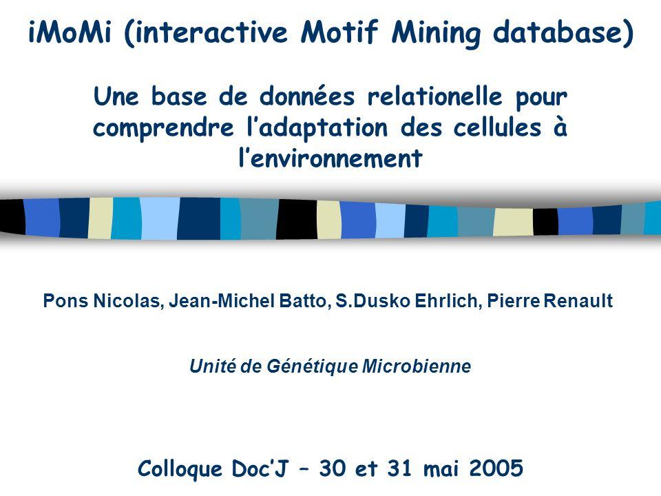 iMoMi (interactive Motif Mining database) Une base de données relationelle pour comprendre ladaptation des cellules à lenvironnement Pons Nicolas, Jean-Michel Batto, S.Dusko Ehrlich, Pierre Renault Unité de Génétique Microbienne Colloque DocJ – 30 et 31 mai 2005