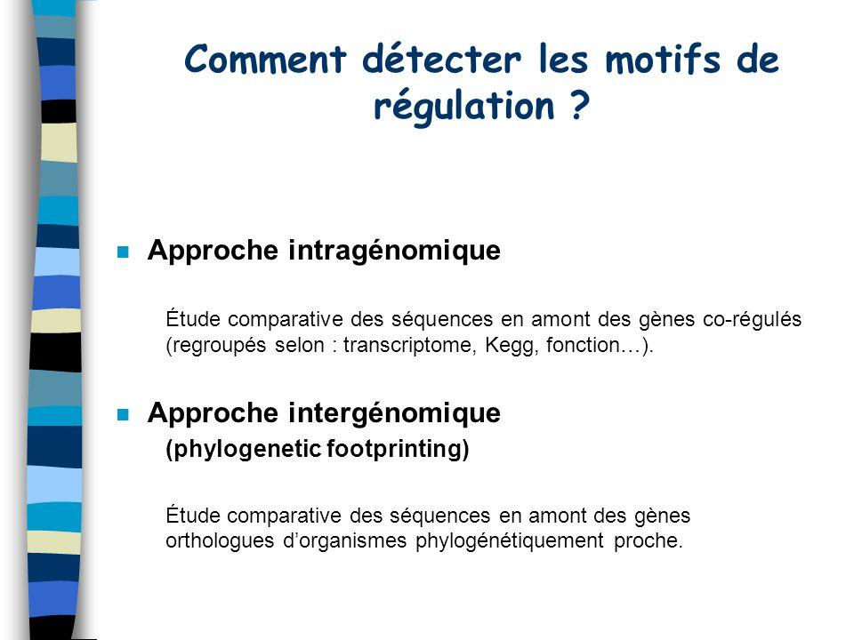 n Approche intragénomique Étude comparative des séquences en amont des gènes co-régulés (regroupés selon : transcriptome, Kegg, fonction…).