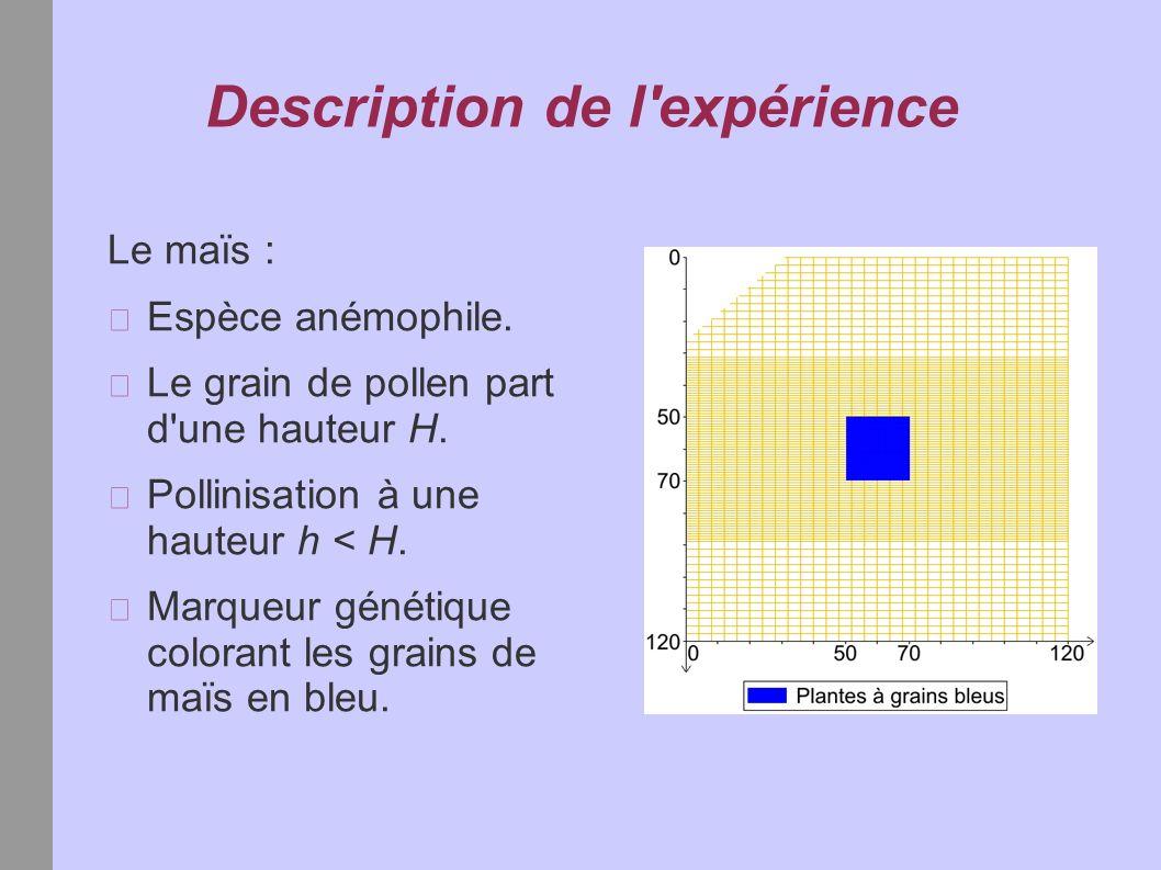 Description de l'expérience Le maïs : Espèce anémophile. Le grain de pollen part d'une hauteur H. Pollinisation à une hauteur h < H. Marqueur génétiqu