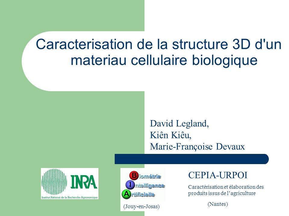 Caracterisation de la structure 3D d un materiau cellulaire biologique CEPIA-URPOI Caractérisation et élaboration des produits issus de lagriculture (Jouy-en-Josas) (Nantes) David Legland, Kiên Kiêu, Marie-Françoise Devaux