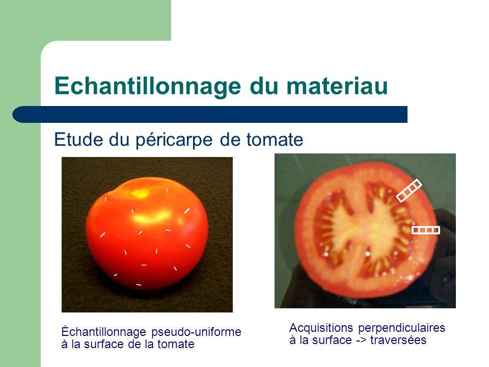 Echantillonnage du materiau Etude du péricarpe de tomate Échantillonnage pseudo-uniforme à la surface de la tomate Acquisitions perpendiculaires à la surface -> traversées