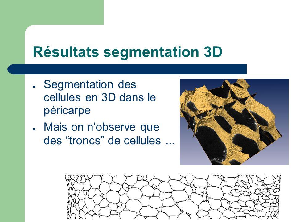 Résultats segmentation 3D Segmentation des cellules en 3D dans le péricarpe Mais on n observe que des troncs de cellules...
