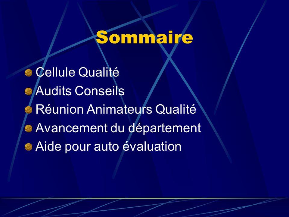 Composition Cellule Nomination de Stéphane Grégoire en tant que Responsable de la Cellule Qualité pour lannée 2005 Benoît Jaillais membre pour 3 ans Connaissance limitée de lAQR dans les Unités du Département (visite unique) Conseils et aide ponctuelle de Raymonde.
