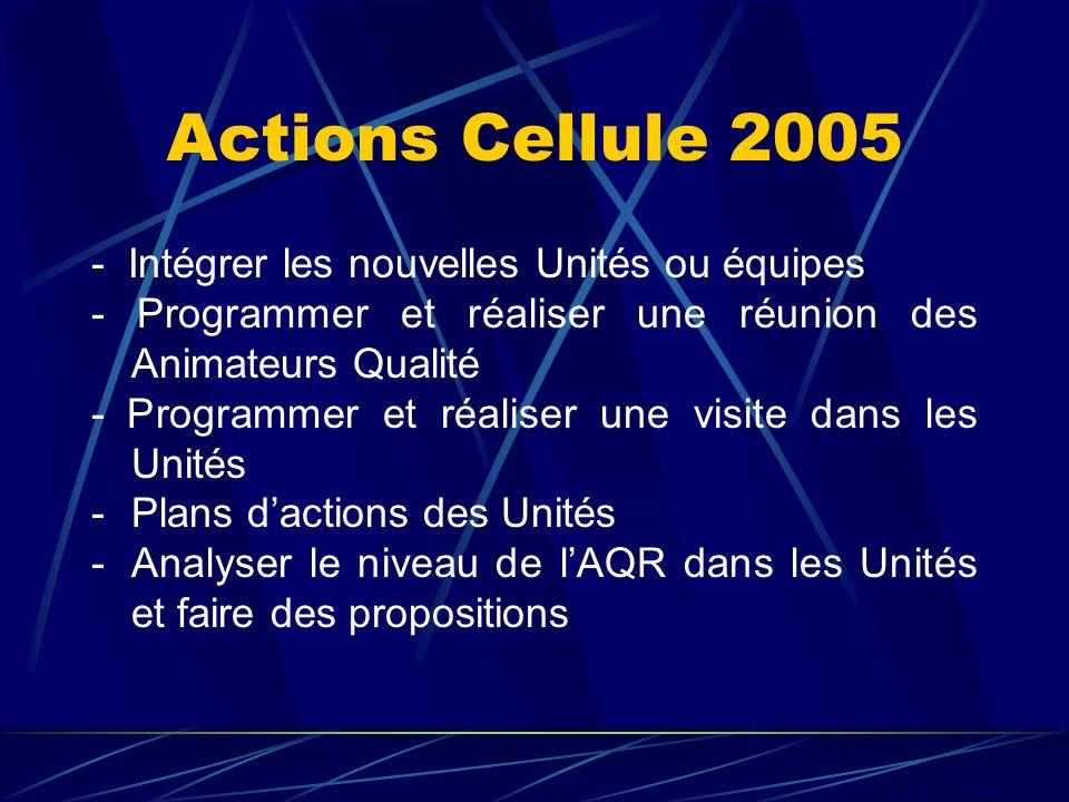 Actions Cellule 2005 - Intégrer les nouvelles Unités ou équipes - Programmer et réaliser une réunion des Animateurs Qualité - Programmer et réaliser u