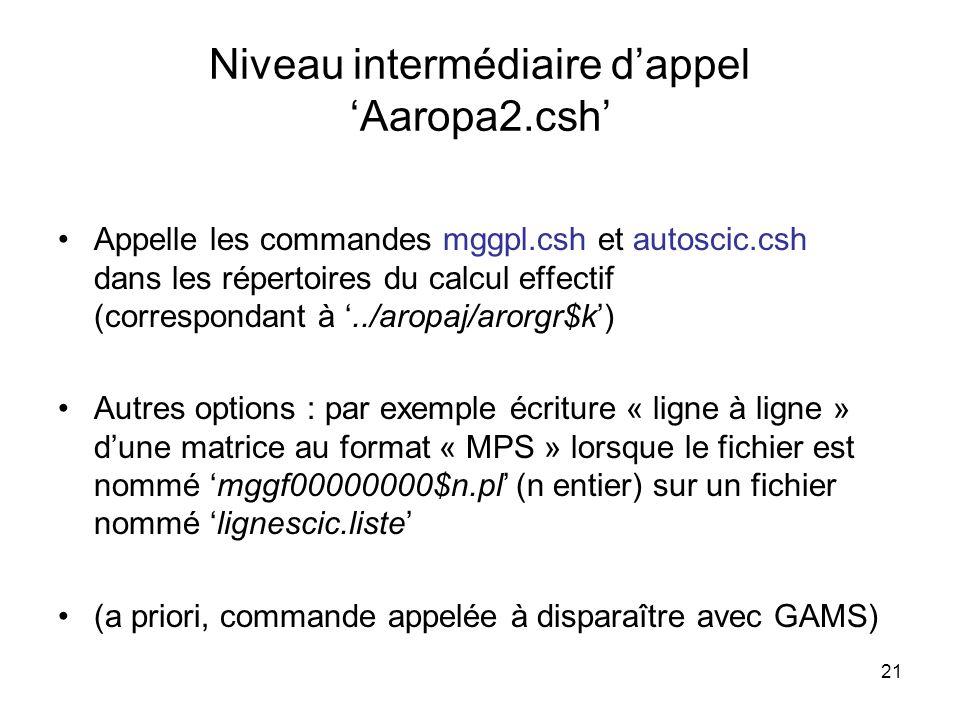 21 Niveau intermédiaire dappel Aaropa2.csh Appelle les commandes mggpl.csh et autoscic.csh dans les répertoires du calcul effectif (correspondant à../