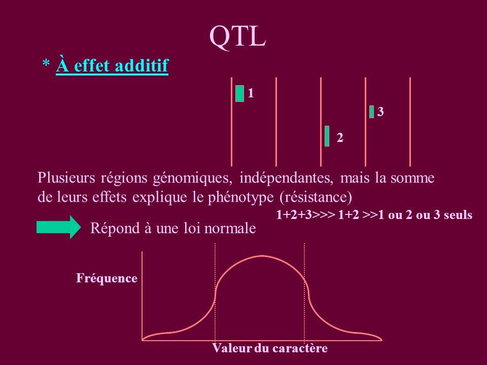 QTL * À effet additif Répond à une loi normale Fréquence Valeur du caractère 1 2 3 Plusieurs régions génomiques, indépendantes, mais la somme de leurs effets explique le phénotype (résistance) 1+2+3>>> 1+2 >>1 ou 2 ou 3 seuls