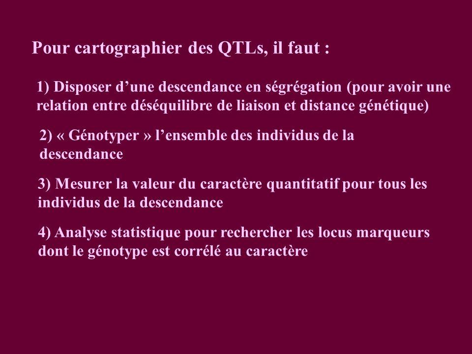Pour cartographier des QTLs, il faut : 1) Disposer dune descendance en ségrégation (pour avoir une relation entre déséquilibre de liaison et distance génétique) 2) « Génotyper » lensemble des individus de la descendance 3) Mesurer la valeur du caractère quantitatif pour tous les individus de la descendance 4) Analyse statistique pour rechercher les locus marqueurs dont le génotype est corrélé au caractère