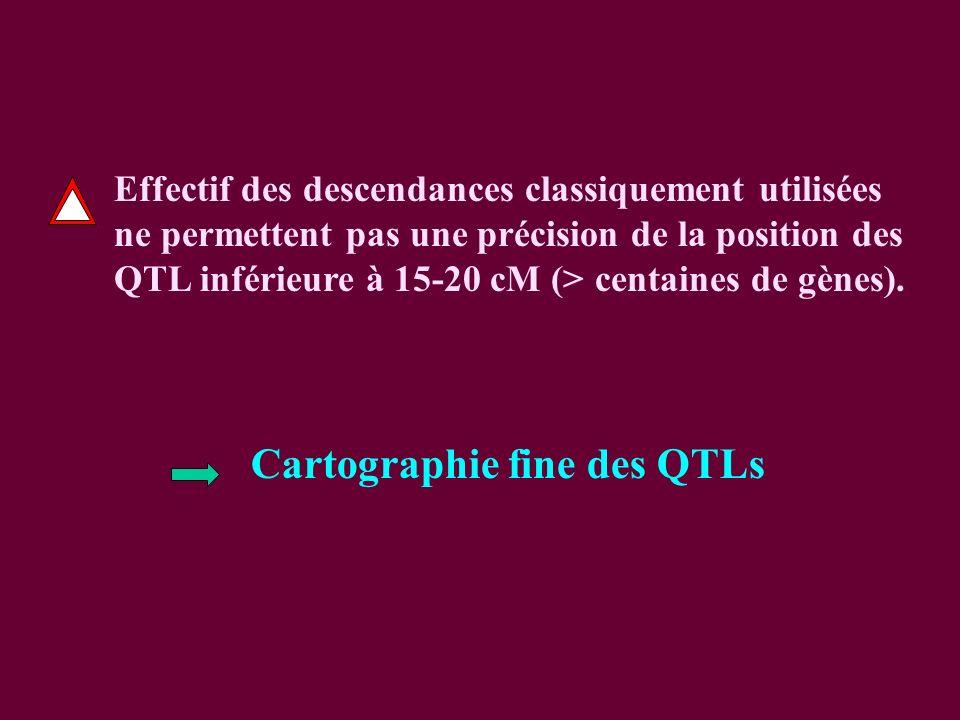 Cartographie fine des QTLs Effectif des descendances classiquement utilisées ne permettent pas une précision de la position des QTL inférieure à 15-20 cM (> centaines de gènes).