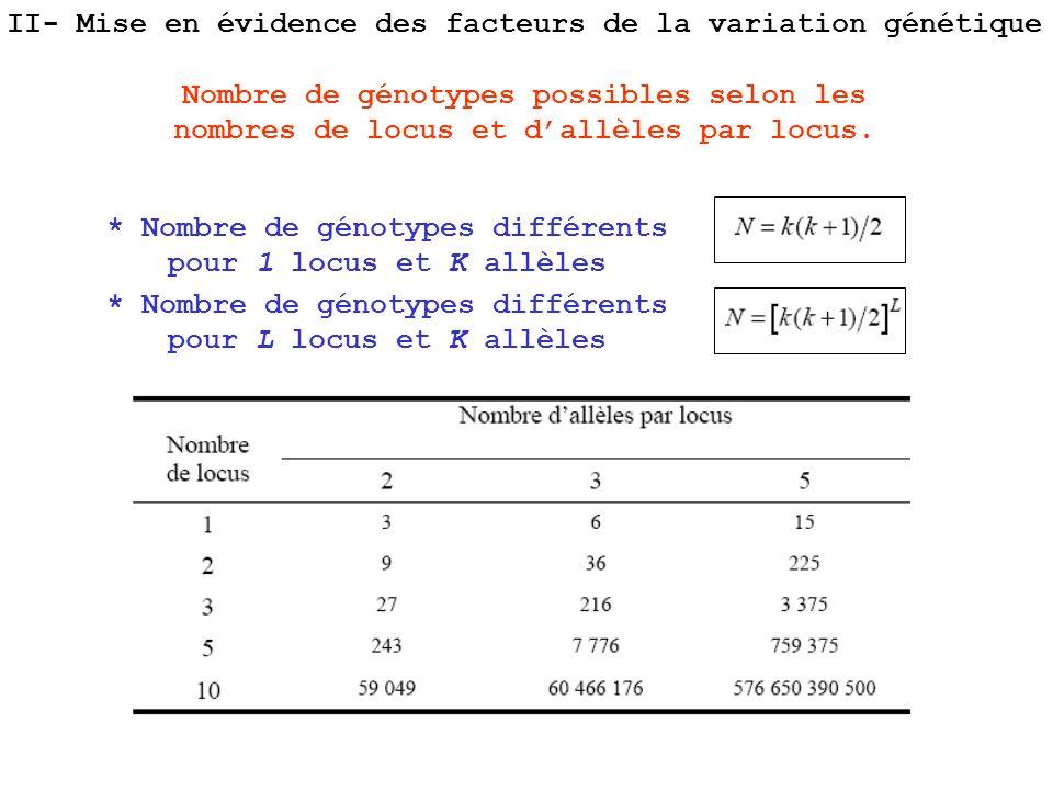 * Nombre de génotypes différents pour 1 locus et K allèles * Nombre de génotypes différents pour L locus et K allèles Nombre de génotypes possibles se
