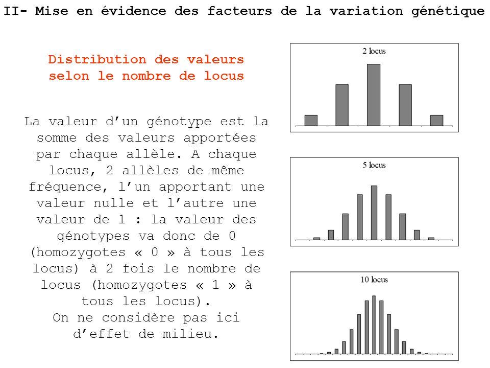 La valeur dun génotype est la somme des valeurs apportées par chaque allèle. A chaque locus, 2 allèles de même fréquence, lun apportant une valeur nul