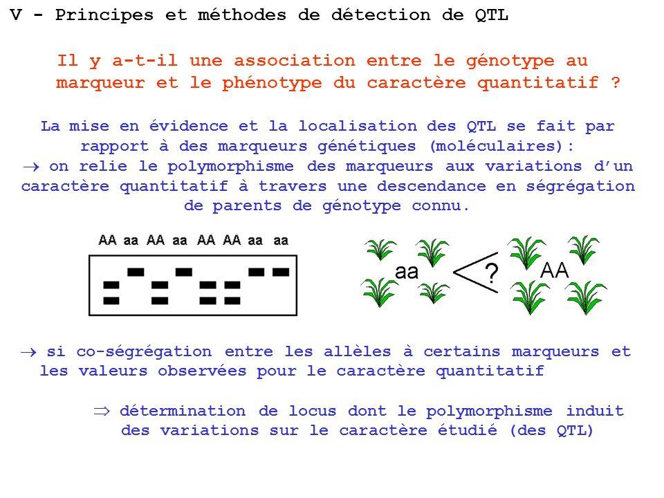 Il y a-t-il une association entre le génotype au marqueur et le phénotype du caractère quantitatif ? V - Principes et méthodes de détection de QTL La