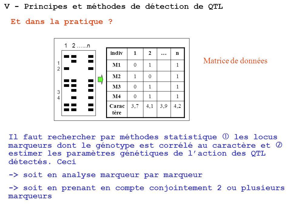 V - Principes et méthodes de détection de QTL 1 2 …...n 1234 1234 indiv12…n M1011 M2101 M3011 M4011 Carac tère 3,74,13,94,2 Matrice de données Il faut