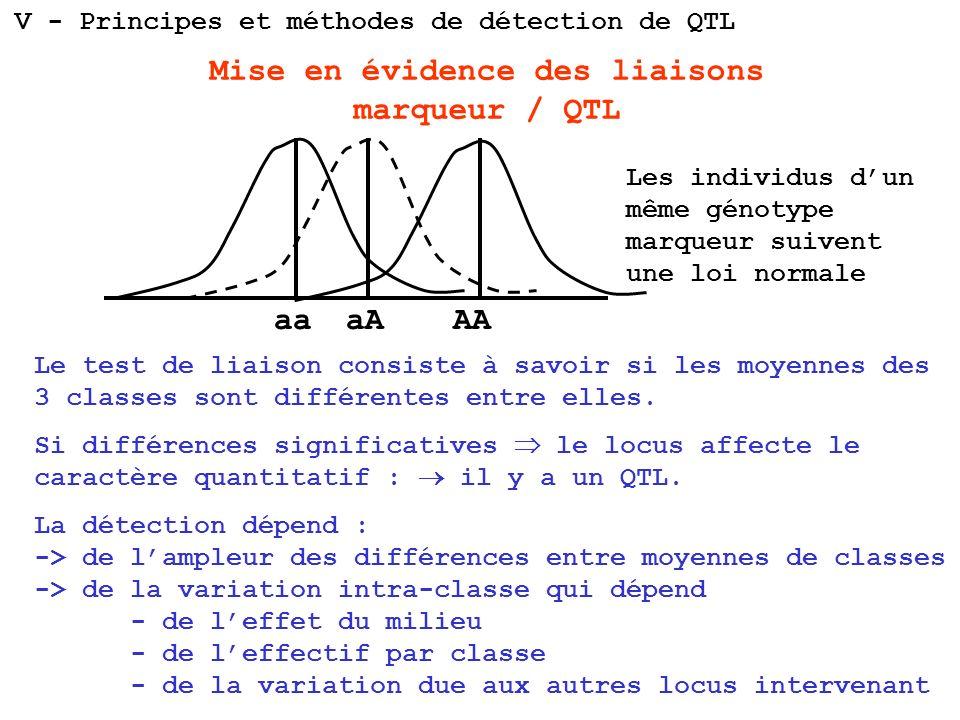 aaaAAA Mise en évidence des liaisons marqueur / QTL Le test de liaison consiste à savoir si les moyennes des 3 classes sont différentes entre elles. S