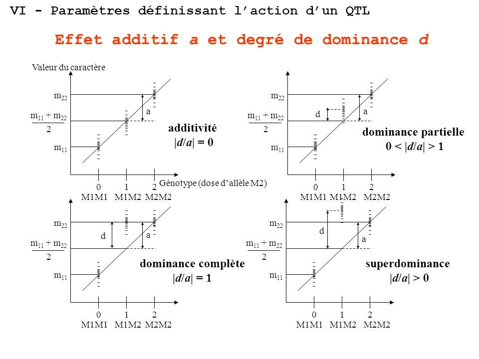 01 Valeur du caractère Génotype (dose dallèle M2) m 22 m 11 + m 22 2 m 11 a 2 01 m 22 m 11 + m 22 2 m 11 d a 2 01 m 22 m 11 + m 22 2 m 11 d a 2 01 m 2