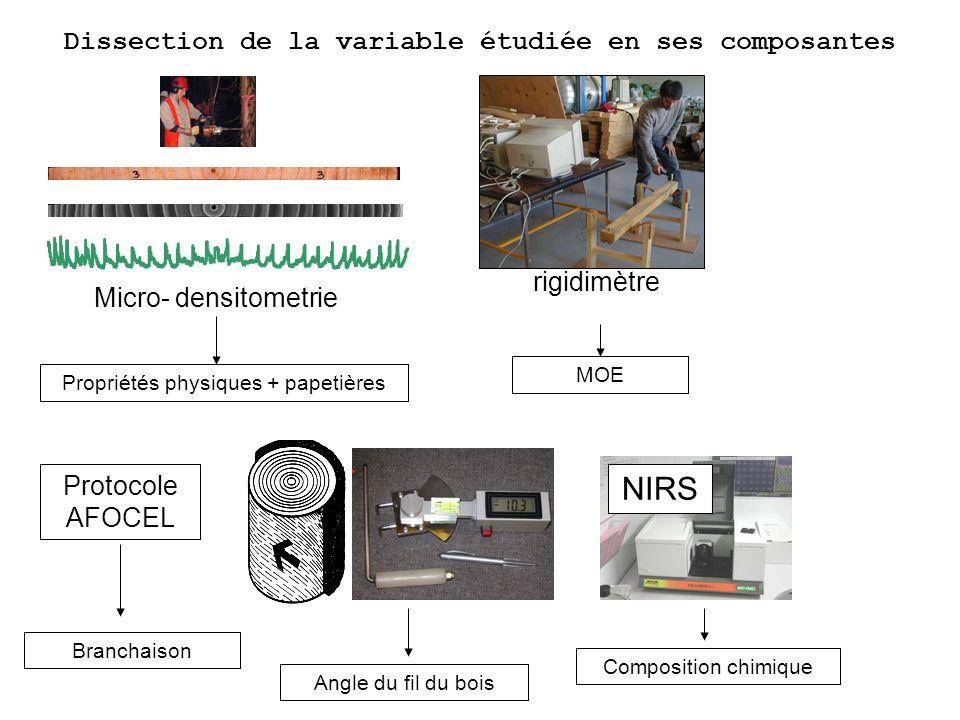 Micro- densitometrie Propriétés physiques + papetières rigidimètre MOE Angle du fil du bois Composition chimique NIRS Protocole AFOCEL Branchaison Dis