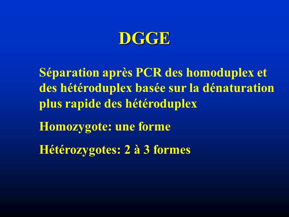 DGGE Séparation après PCR des homoduplex et des hétéroduplex basée sur la dénaturation plus rapide des hétéroduplex Homozygote: une forme Hétérozygote