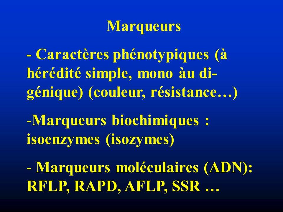 Marqueurs - Caractères phénotypiques (à hérédité simple, mono àu di- génique) (couleur, résistance…) -Marqueurs biochimiques : isoenzymes (isozymes) -