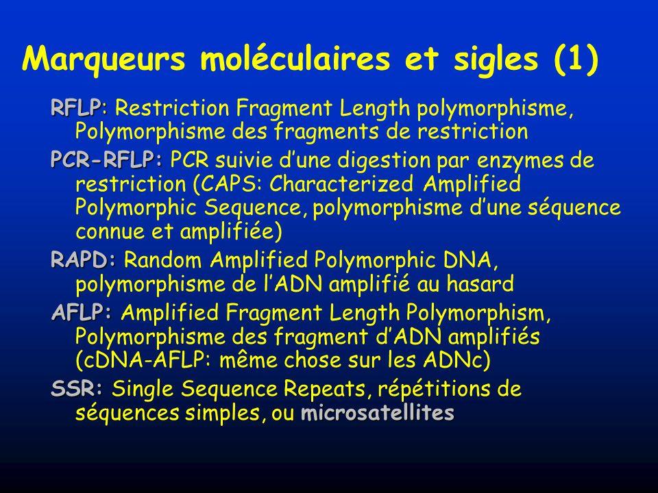 SCAR SCAR: Sequence Characterized Amplified Region AFLP/RAPD Purification (réamplifié) Clonage Séquençage Amorces spécifiques +/- ; polymorphe, monomorphe