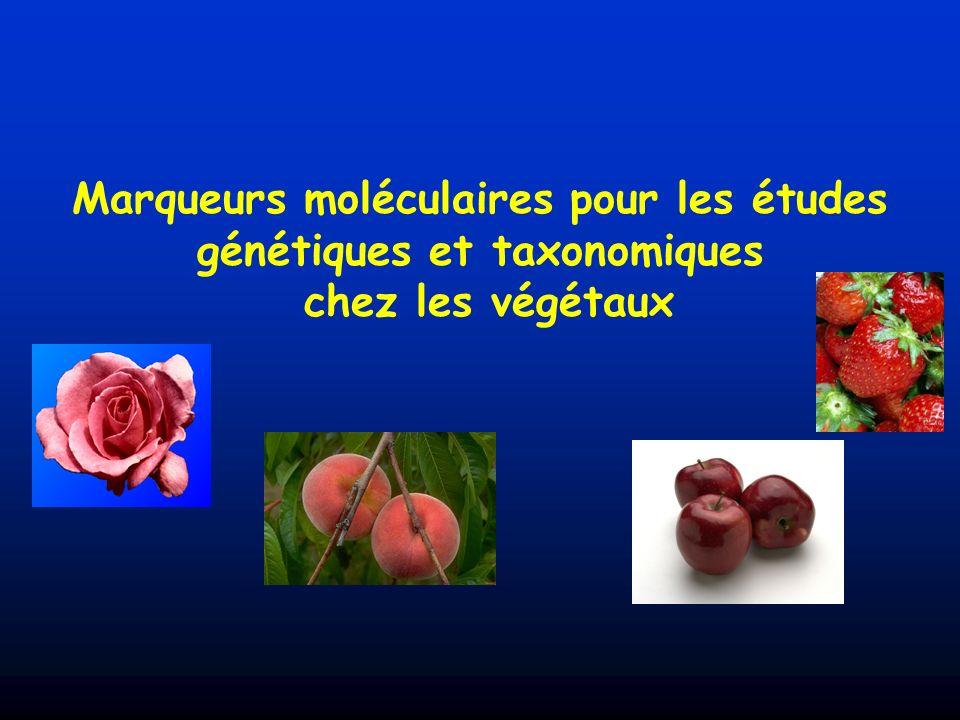 Spécificité des études génétiques chez les plantes Hermaphrodisme (fréquent) Clonage possible (bouturage, greffage, in vitro, etc…) Croisements interspécifiques fréquents Systèmes dauto-incompatibilité Dispersion du pollen, flux de gènes sauvage/cultivé Chez les plantes pérennes (arbre, vigne) Longueur des périodes juvéniles, des générations, des programmes dhybridation