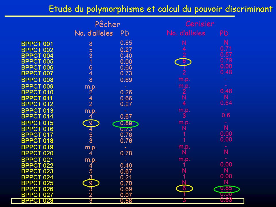 Etude du polymorphisme et calcul du pouvoir discriminant PD No. dalleles PD No. dalleles PD No. dalleles PD BPPCT 001 BPPCT 002 BPPCT 004 BPPCT 005 BP