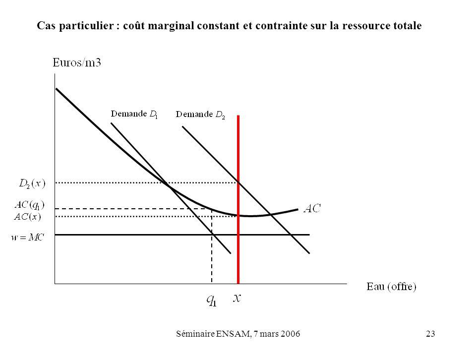 Séminaire ENSAM, 7 mars 200623 Cas particulier : coût marginal constant et contrainte sur la ressource totale