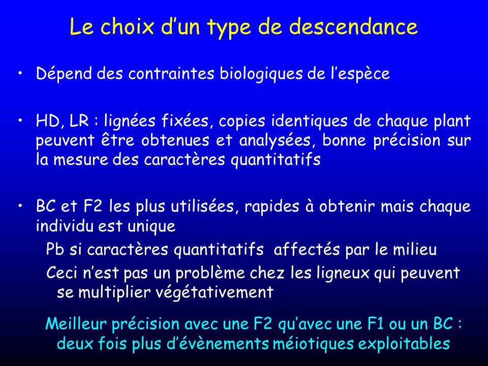 Le choix dun type de descendance Dépend des contraintes biologiques de lespèce HD, LR : lignées fixées, copies identiques de chaque plant peuvent être