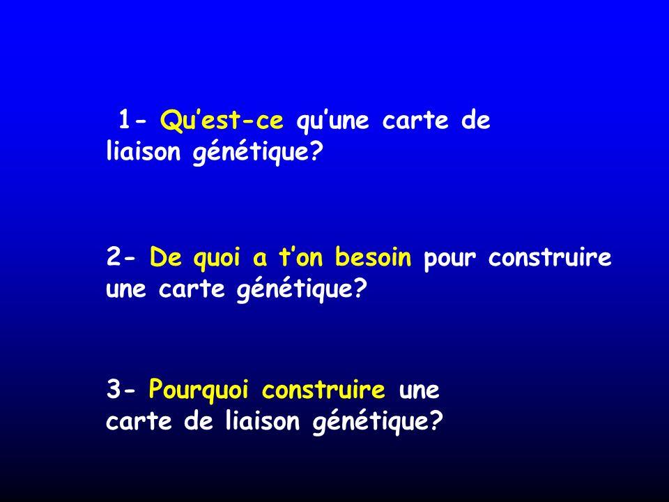 1- Quest-ce quune carte de liaison génétique? 2- De quoi a ton besoin pour construire une carte génétique? 3- Pourquoi construire une carte de liaison