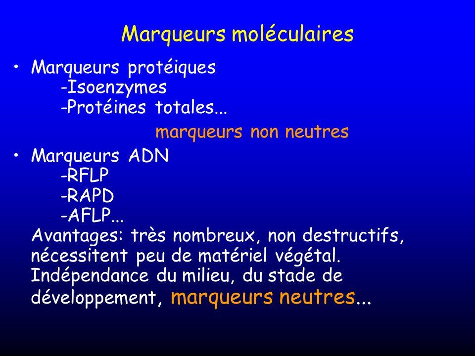 Marqueurs moléculaires Marqueurs protéiques -Isoenzymes -Protéines totales... marqueurs non neutres Marqueurs ADN -RFLP -RAPD -AFLP... Avantages: très