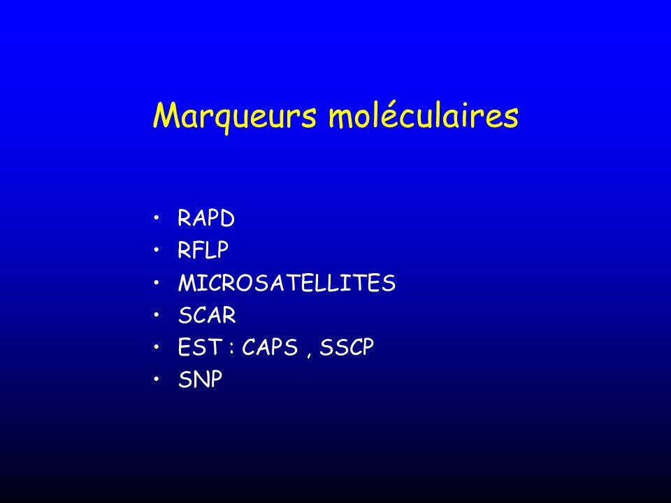 Marqueurs moléculaires RAPD RFLP MICROSATELLITES SCAR EST : CAPS, SSCP SNP