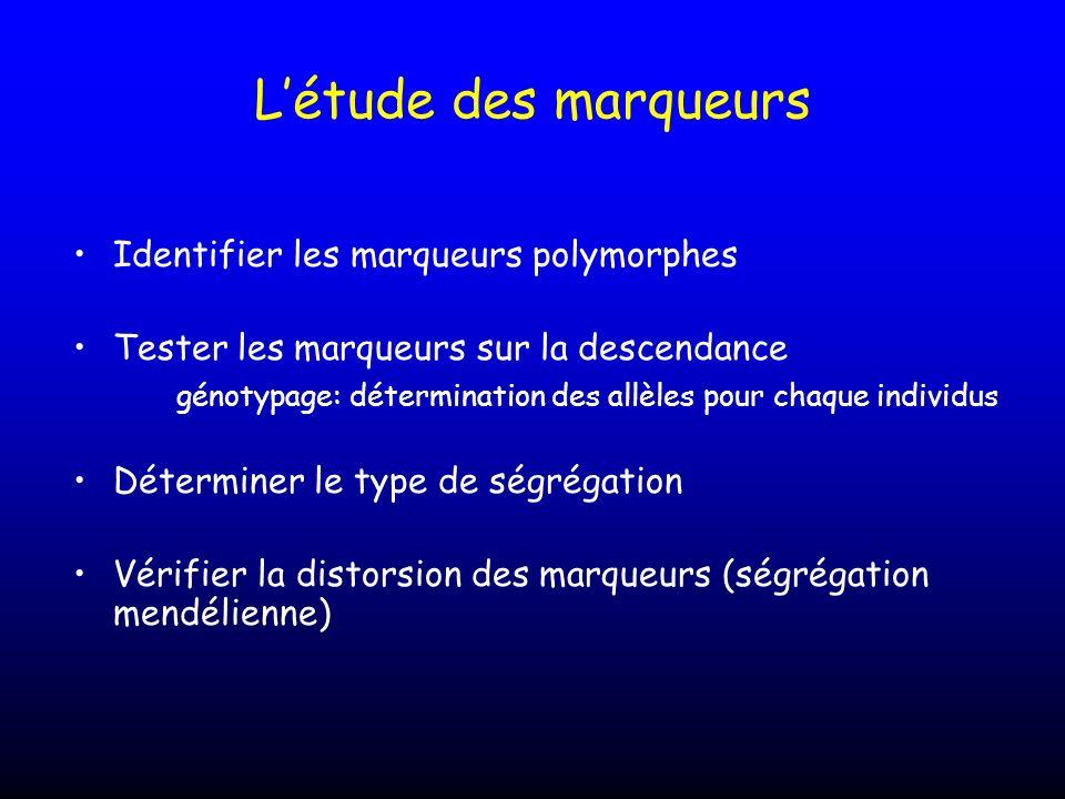 Létude des marqueurs Identifier les marqueurs polymorphes Tester les marqueurs sur la descendance génotypage: détermination des allèles pour chaque in
