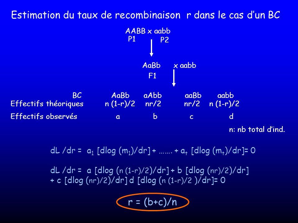 Estimation du taux de recombinaison r dans le cas dun BC AABB x aabb P1 P2 AaBb F1 x aabb AaBb aabbBCaAbbaaBb Effectifs théoriques Effectifs observésa