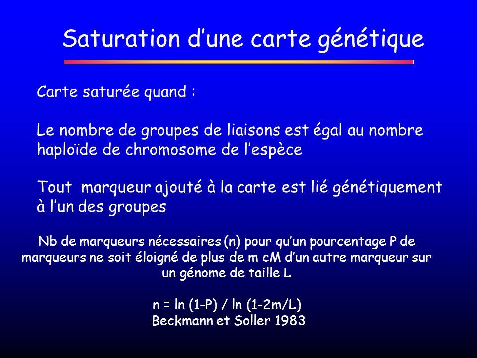 Saturation dune carte génétique Carte saturée quand : Le nombre de groupes de liaisons est égal au nombre haploïde de chromosome de lespèce Tout marqu