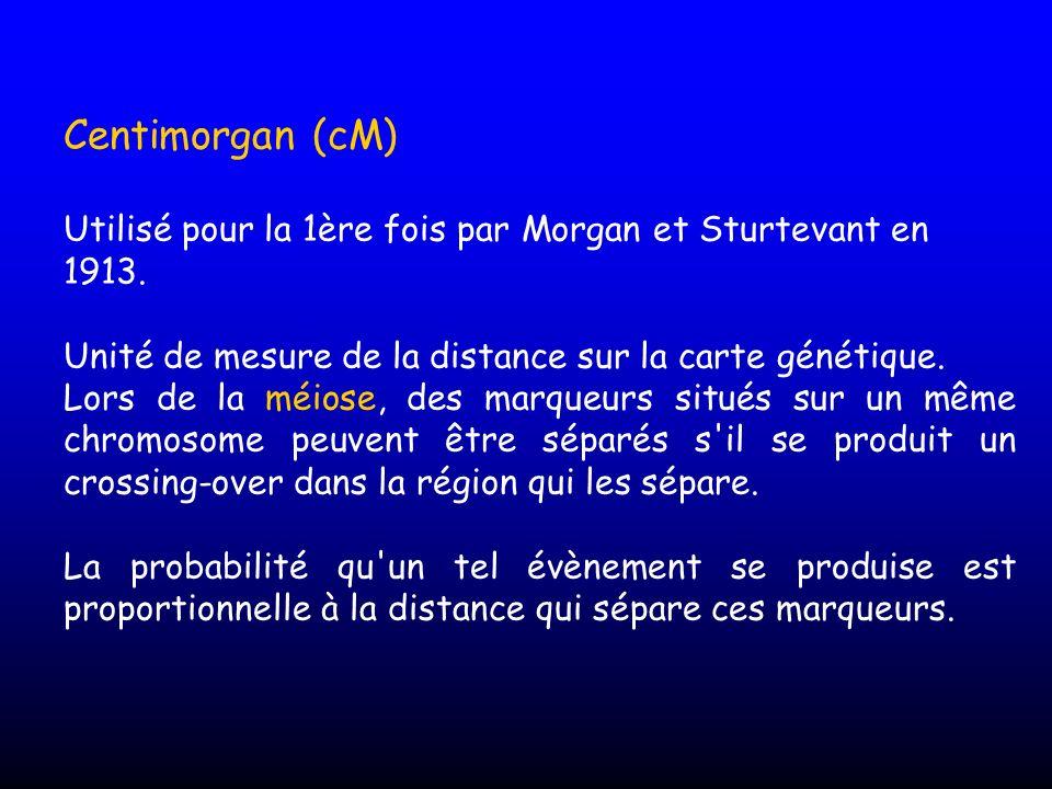 Centimorgan (cM) Utilisé pour la 1ère fois par Morgan et Sturtevant en 1913. Unité de mesure de la distance sur la carte génétique. Lors de la méiose,