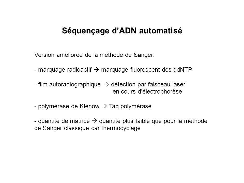 Séquençage dADN automatisé Version améliorée de la méthode de Sanger: - marquage radioactif marquage fluorescent des ddNTP - film autoradiographique d