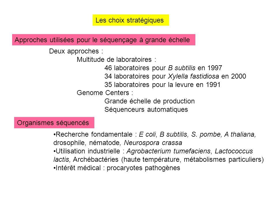 Les choix stratégiques Approches utilisées pour le séquençage à grande échelle Organismes séquencés Deux approches : Multitude de laboratoires : 46 la