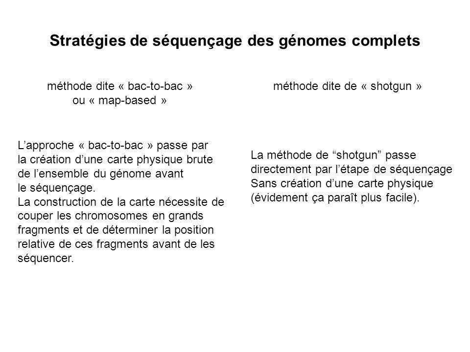 Stratégies de séquençage des génomes complets méthode dite « bac-to-bac » ou « map-based » méthode dite de « shotgun » Lapproche « bac-to-bac » passe