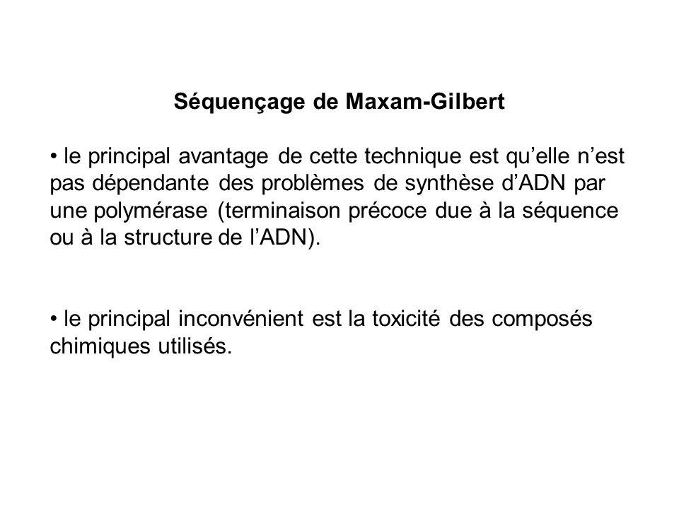Séquençage de Maxam-Gilbert le principal avantage de cette technique est quelle nest pas dépendante des problèmes de synthèse dADN par une polymérase