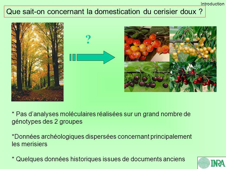 ? Que sait-on concernant la domestication du cerisier doux ? * Pas danalyses moléculaires réalisées sur un grand nombre de génotypes des 2 groupes *Do