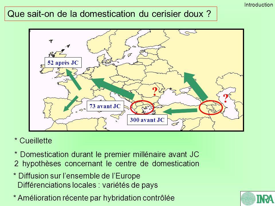 Que sait-on de la domestication du cerisier doux ? * Diffusion sur lensemble de lEurope Différenciations locales : variétés de pays * Amélioration réc