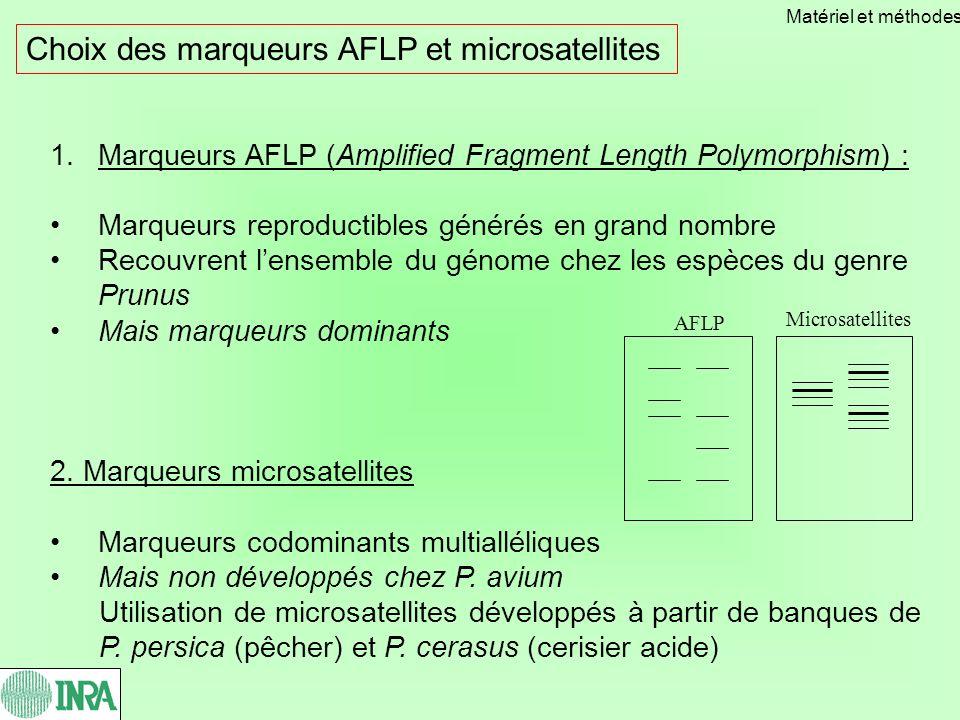 1.Marqueurs AFLP (Amplified Fragment Length Polymorphism) : Marqueurs reproductibles générés en grand nombre Recouvrent lensemble du génome chez les espèces du genre Prunus Mais marqueurs dominants 2.
