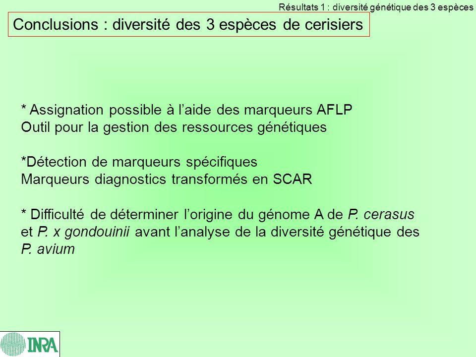 Conclusions : diversité des 3 espèces de cerisiers * Assignation possible à laide des marqueurs AFLP Outil pour la gestion des ressources génétiques *Détection de marqueurs spécifiques Marqueurs diagnostics transformés en SCAR * Difficulté de déterminer lorigine du génome A de P.